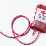 猫 腎不全 輸血