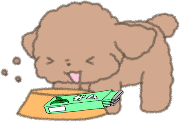 犬 ガム 人間