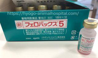 猫白血病ウイルス感染症 ワクチン