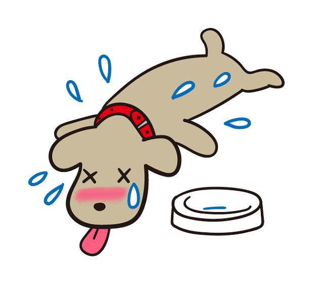 犬 熱中症 冬